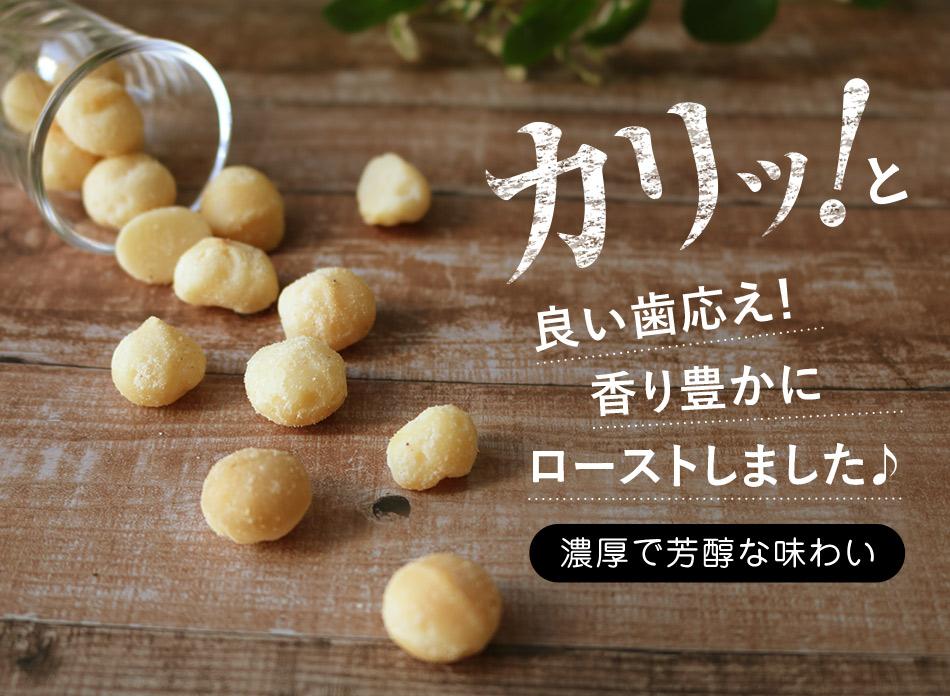 マカダミアナッツ 鎌倉 天然塩 幻の塩 マカダミアナッツ 55g ハッピーナッツカンパニー